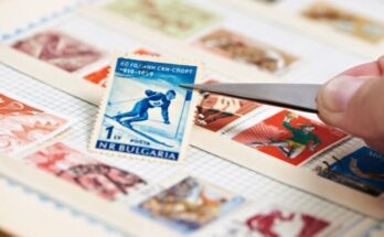 The Most Popular Collectible Items You Can Turn Into a Hobby