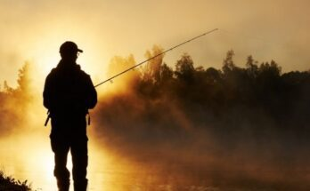 The Best Fishing Trips To Take in the Fall